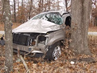 Highway 17 rollover seriously injures Springfield man