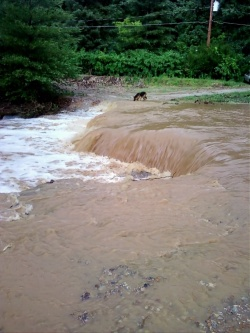 Rapid rainfall washes out many roads